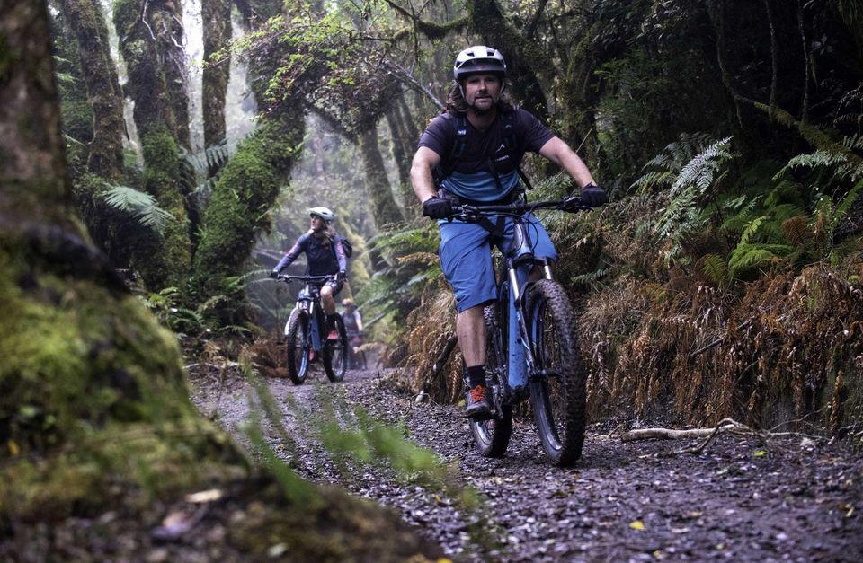 Timber Trail e-Bike Classic