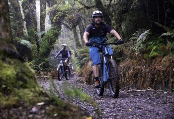 Timber Trail e-Bike Classic