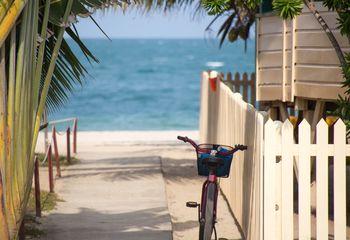 Florida Keys and Everglades Bike Tour