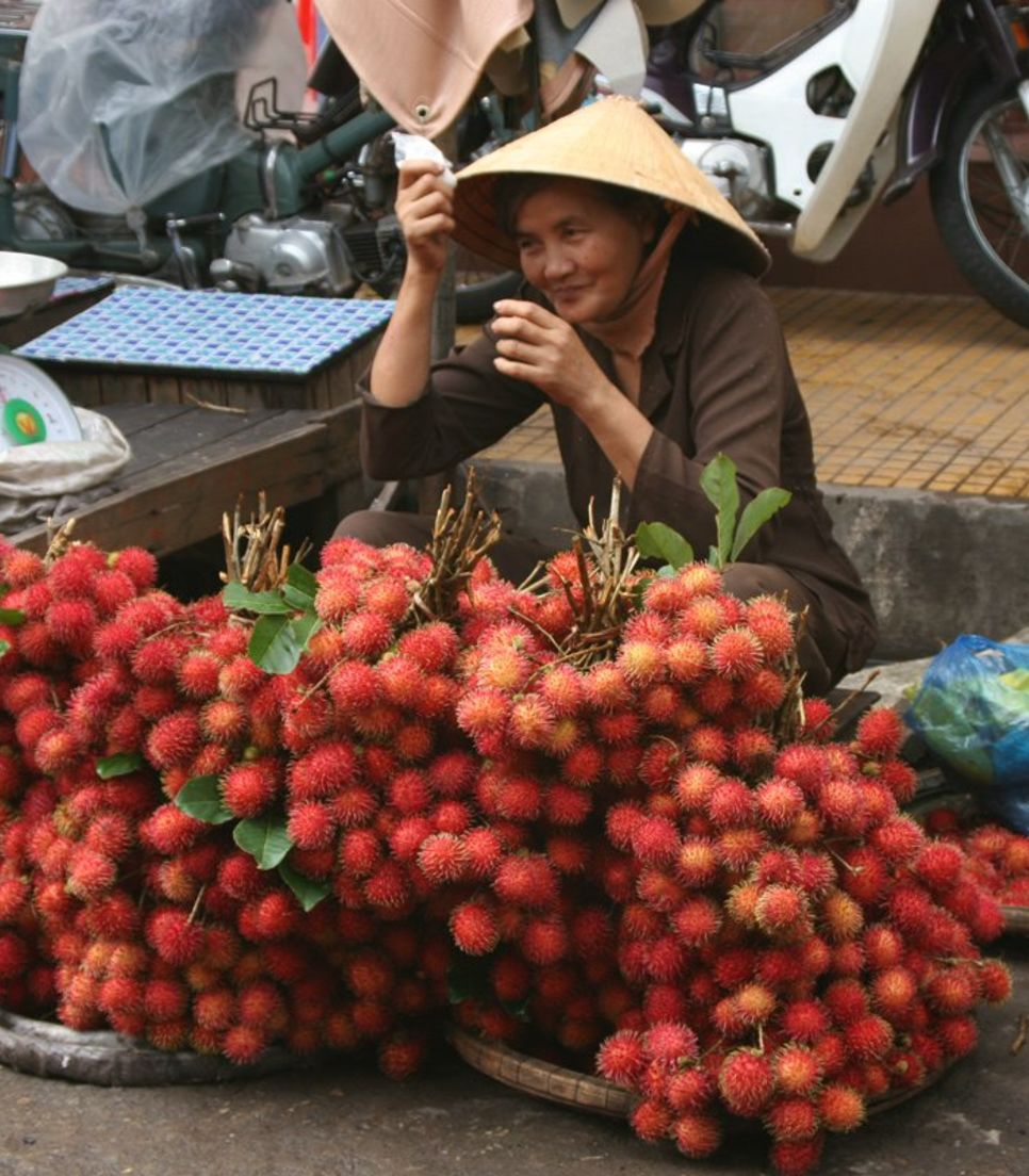 Have a taste of the rambutan and other fruits found only on this side of the world