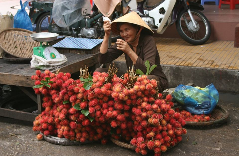 Vietnam Bicycling Tours: Meandering the Mekong Delta