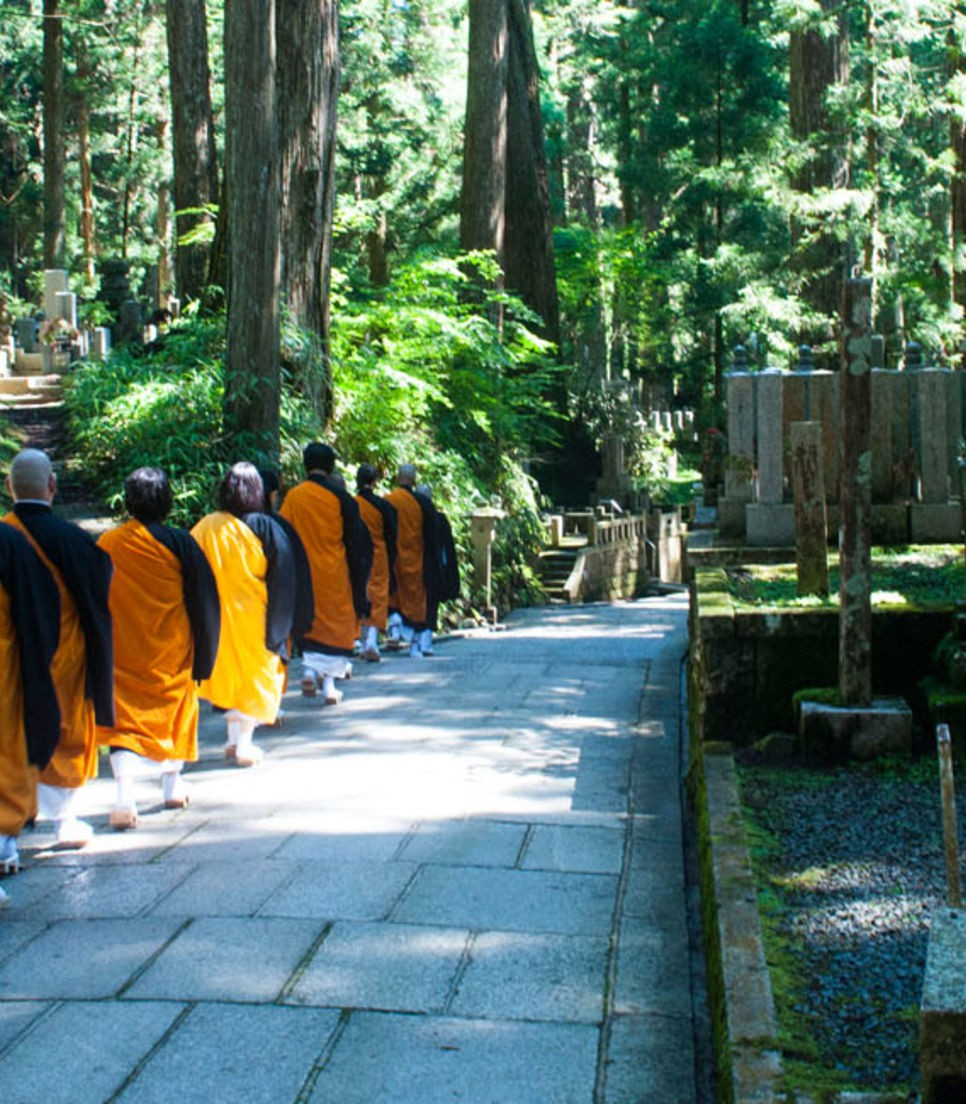 Be in the company of monks and experience some aspects of their life