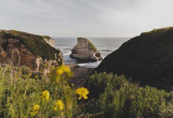 Santa Cruz Singletrack