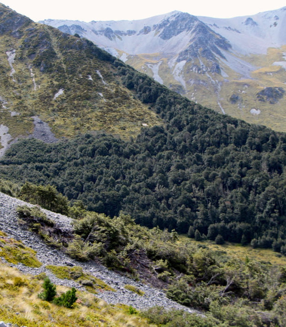 Experience the best MTB riding as you explore the locals' favourites and the experts' picks