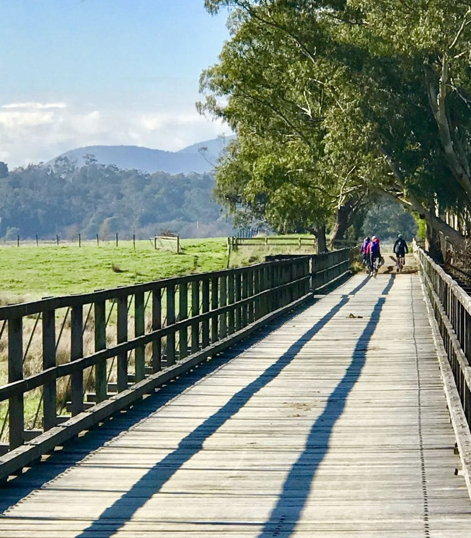 Cycle the lovely rail trail on a guided group tour