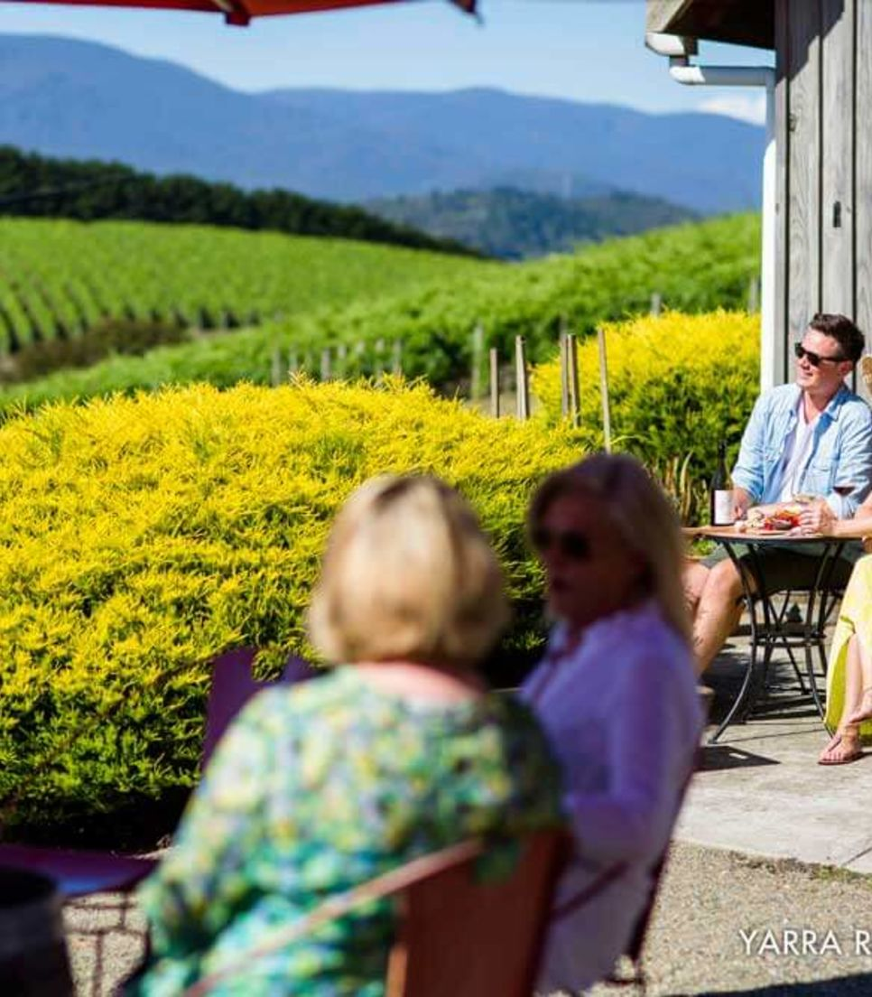 Explore the Yarra Valley by bike