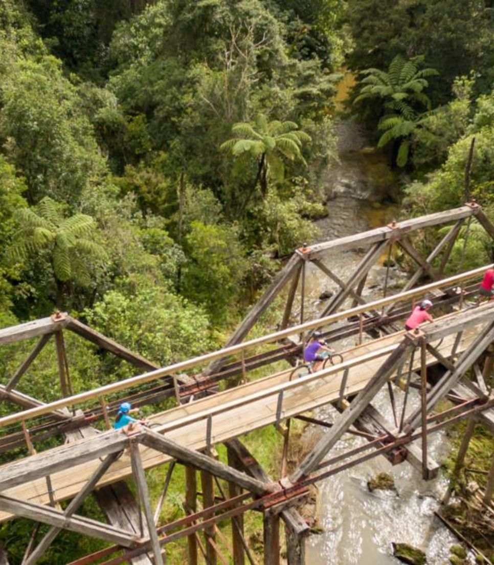 Embark on a multi-activity tour with 2 days of fun cycling through the Bay of Islands