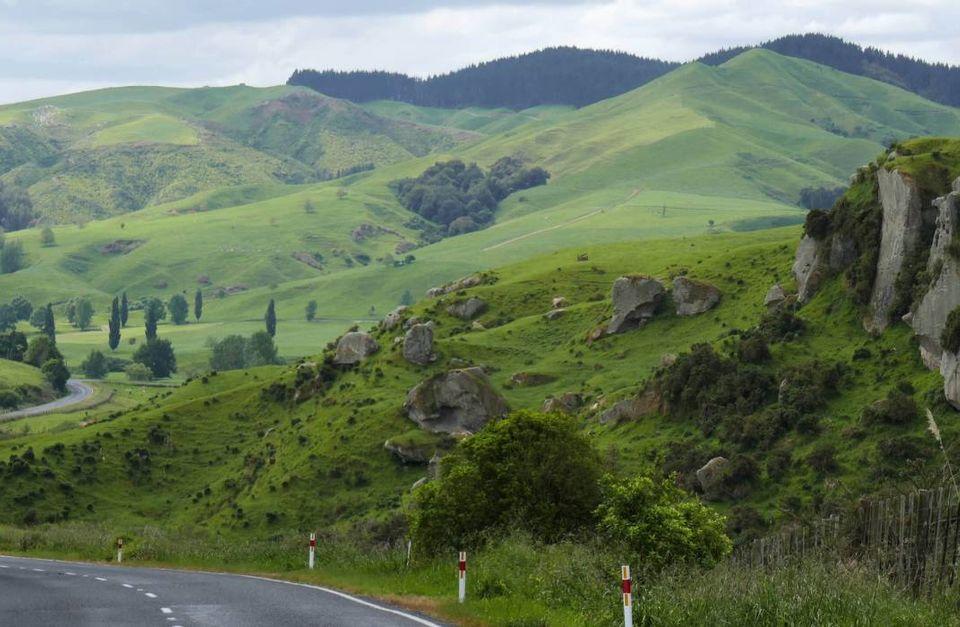 Wairapa and Hawke's Bay Back Roads