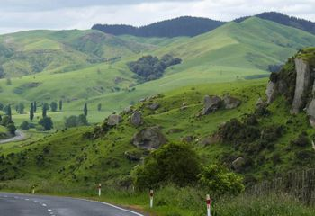 Wairarapa and Hawke's Bay Back Roads