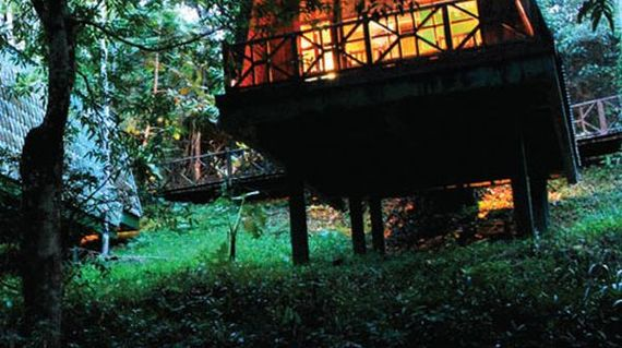 Spend two days in authentic Borneo timber bungalows  located right in the middle of the jungle