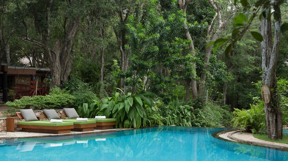 Stylish accommodation that's nestled in the jungle and comes with a refreshing outdoor pool