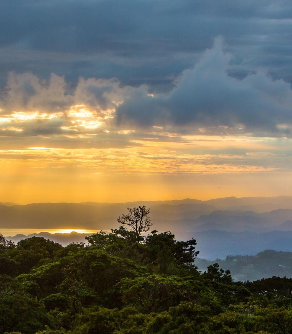 Discover the exceptional scenery of Monteverde