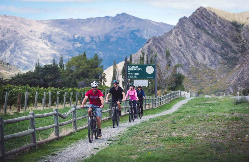 Bike the Wineries Day Tour